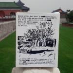 le BIB au temple du soleil photo gros plan